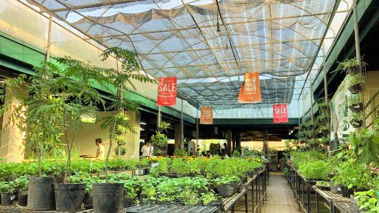 Cedarhills Garden Center
