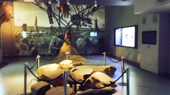 Origins Centre Museum