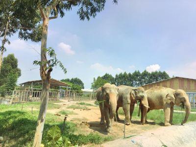 향시동물원