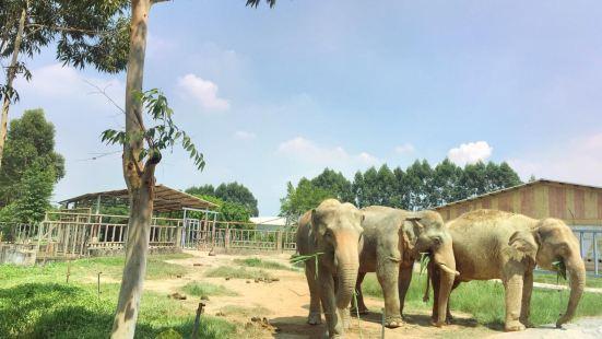 Xiangshi Zoo