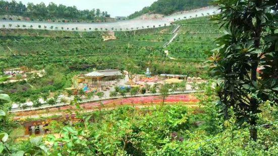 Xiangjiabao Dream Flower World