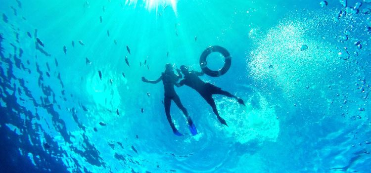 Boundary Islet Diving2