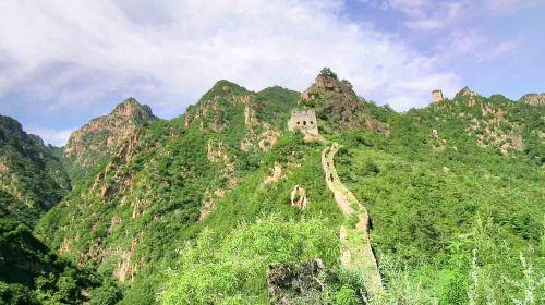 Mount Zijin Tourist Area
