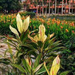 南山文化生態園用戶圖片