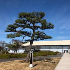 Kyoto National Museum User Photo