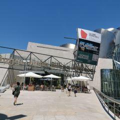 畢爾巴鄂美術館用戶圖片