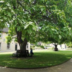 그린 템플턴 대학 여행 사진