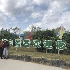 Gaoming Yingxiang Ecological Park User Photo