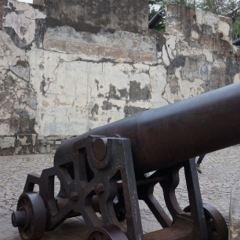 大砲台用戶圖片