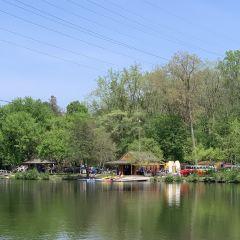 Barton Nature Area User Photo