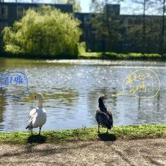 University of York User Photo