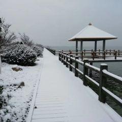 Tuangui Scenic Area User Photo