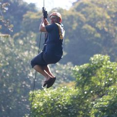 Flying Gibbons' Jungle Leap User Photo
