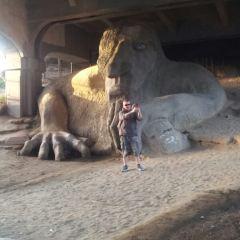 費蒙巨人用戶圖片