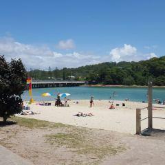 Cremorne Point to Mosman Bay Walk User Photo