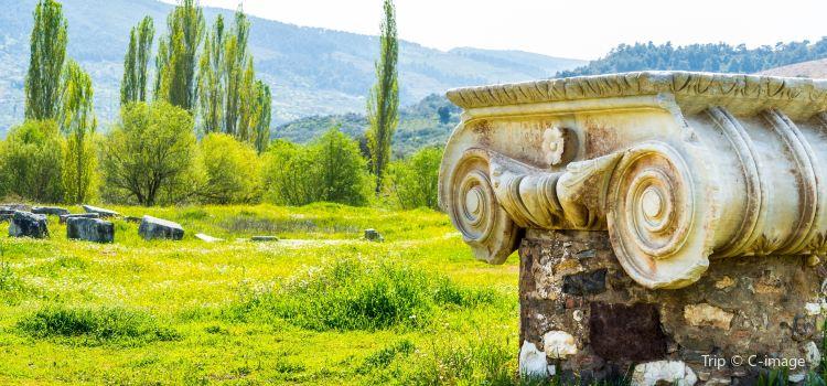 The Temple of Artemis1