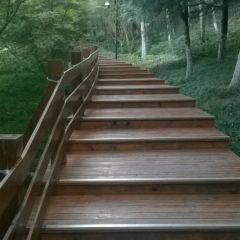 珠山宕口公園用戶圖片