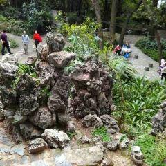 Zhongshan Park User Photo