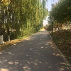 Yueyadao Ecology Park Center Square User Photo