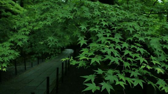 China Wuwenhua Exposition Garden