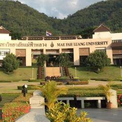 Mea Fah Luang Unversity User Photo