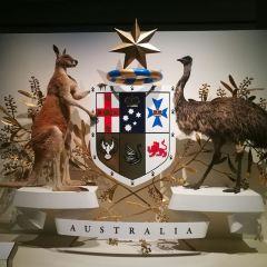 Melbourne Museum User Photo