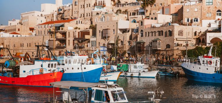 Jaffa Old City1