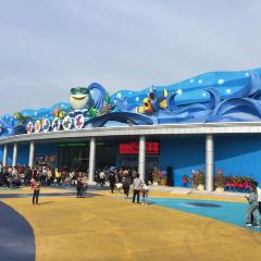 Qinhu Lake Ocean World User Photo