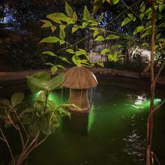 杭州雲曼溫泉用戶圖片