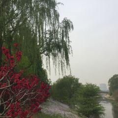Jiangfu Park User Photo