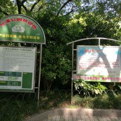 Lanxi Youth Park User Photo