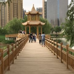 銀灘濕地公園用戶圖片
