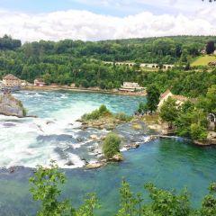 Rhine Falls User Photo