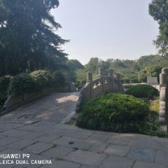 Ming Xiaoling Mausoleum User Photo