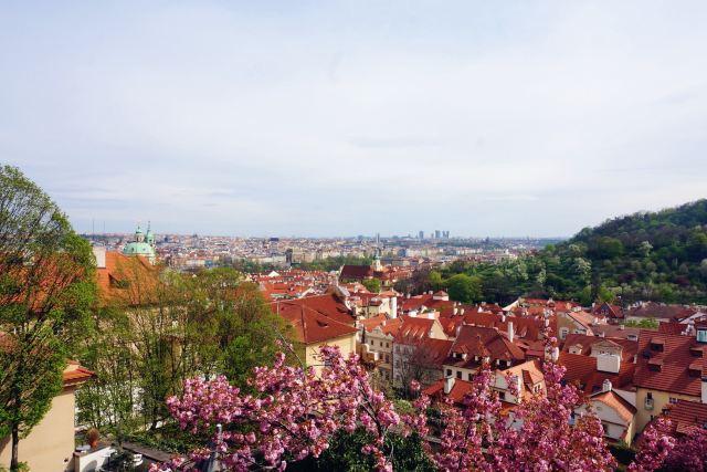 蜜月波西米亞童話鎮,捷克&奧地利自由行