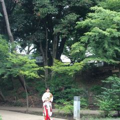 上野公園用戶圖片
