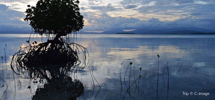 Pamilacan Island1