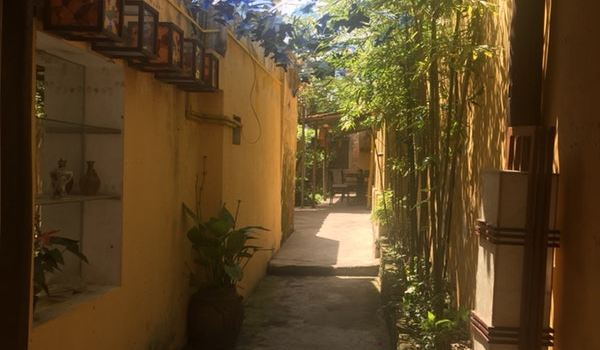 Serene Garden Restaurant & Cafe1