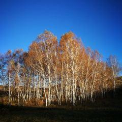 화무거우국가삼림공원 여행 사진