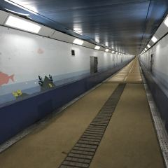Kanmom Tunnel User Photo