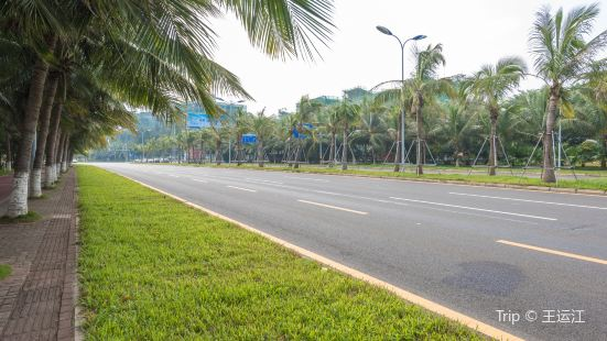 Haikou Binhai Main Road