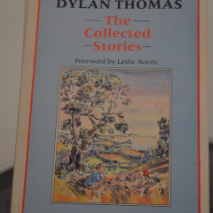 Dylan Thomas Centre User Photo