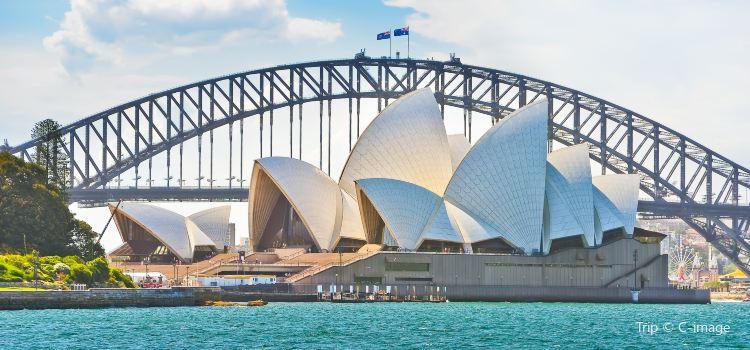 悉尼歌劇院1