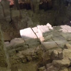 Archeological Crypt of the Parvis of Notre-Dame User Photo