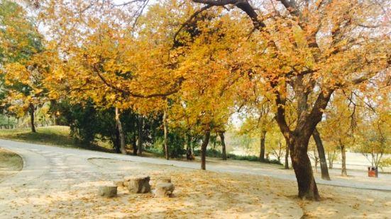 元土城遺址公園
