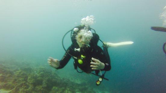 Scyllis Divers