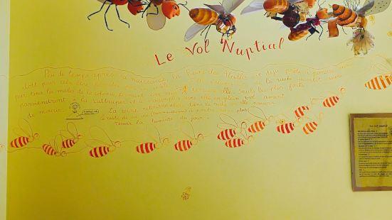 Nougat Arnaud Soubeyran Fabrique & Musee