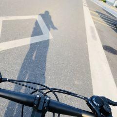 千島湖樂遊環湖騎行用戶圖片