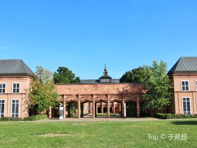格拉西博物館
