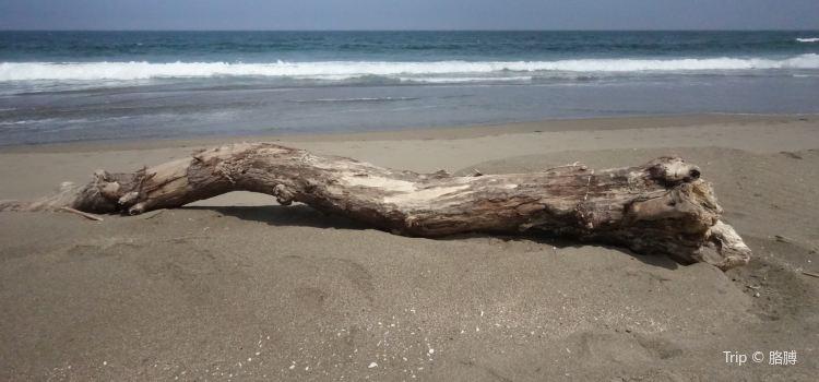 Tanesashi Coast3